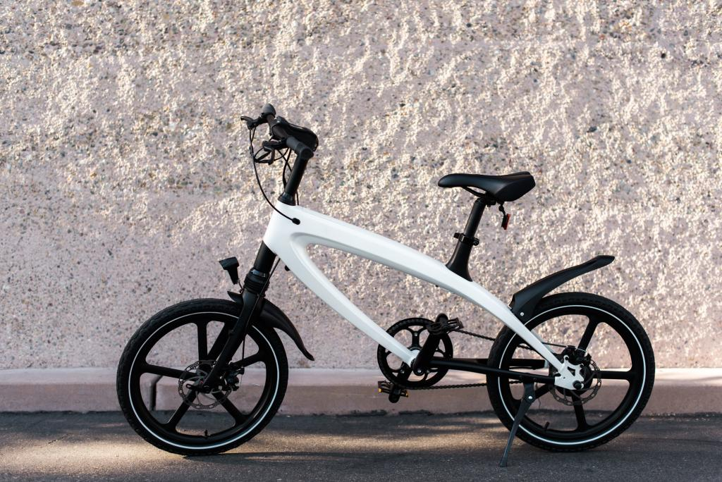 Электровелосипед Rarog Kickstarter bicycle